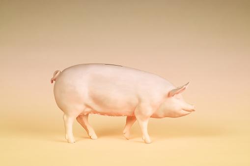 Realistic Piggy Bank - gettyimageskorea