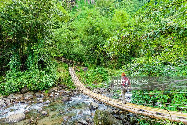 Really awesome bamboo bridge in St Vincent
