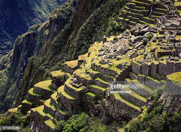 rear terraces of machu picchu - terraced field stock pictures, royalty-free photos & images
