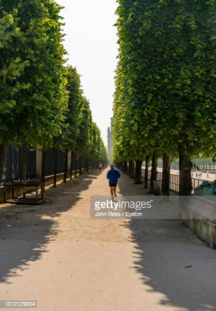 Rear View Full Length Of Man Running Amidst Trees On Walkway