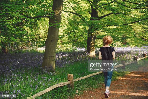 rear view full length of woman walking by trees at park - bortes stock-fotos und bilder