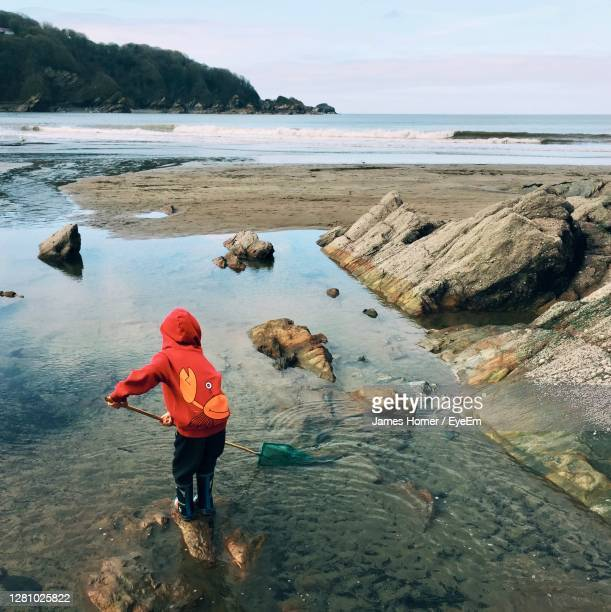 rear view of a boy on rock at beach fishing with a net - coastal feature stock pictures, royalty-free photos & images