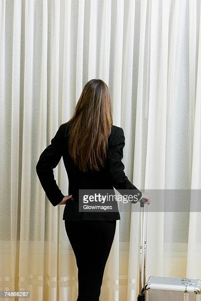 Rear view of a businessman standing with a suitcase