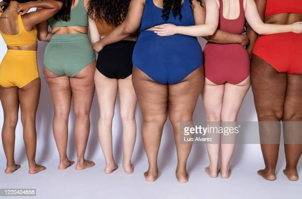 rear view of a diverse females together in underwear - femme pulpeuse photos et images de collection