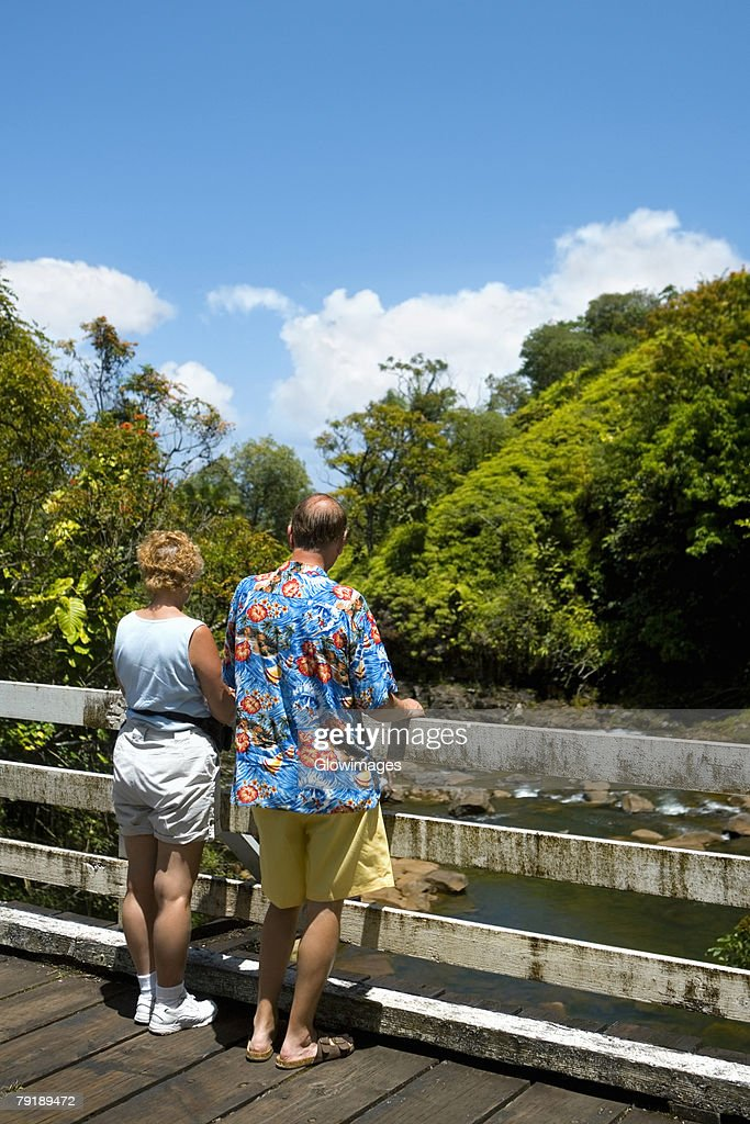 Rear view of a man and a woman looking at a view, Onemea Bay, Big Island, Hawaii Islands, USA : Foto de stock