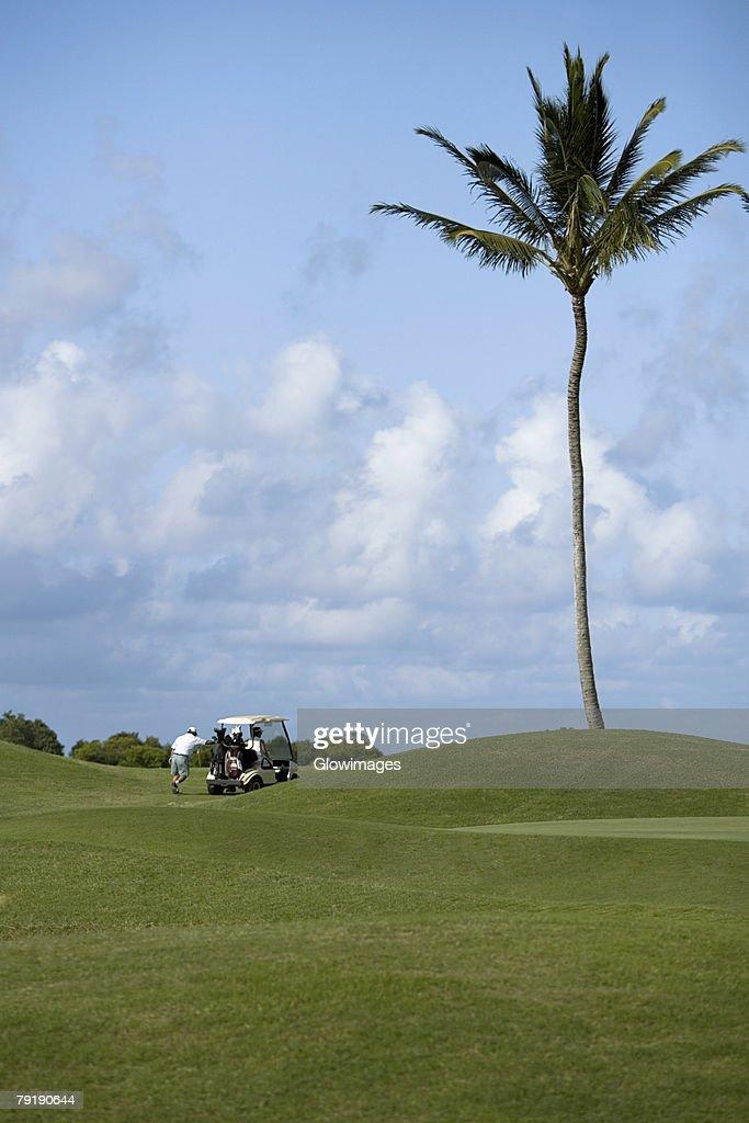 Rear view of a man pushing a golf cart in a golf course, Kauai, Hawaii Islands, USA : Foto de stock