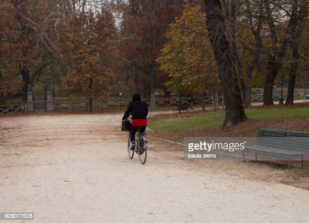 Rear view of a man riding a bicycle in Parco Sempione