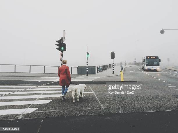 Rear View Of A Man With Dog Walking On Road