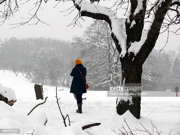 rear view of a person walking on snow covered landscape - yvan moallic stock-fotos und bilder