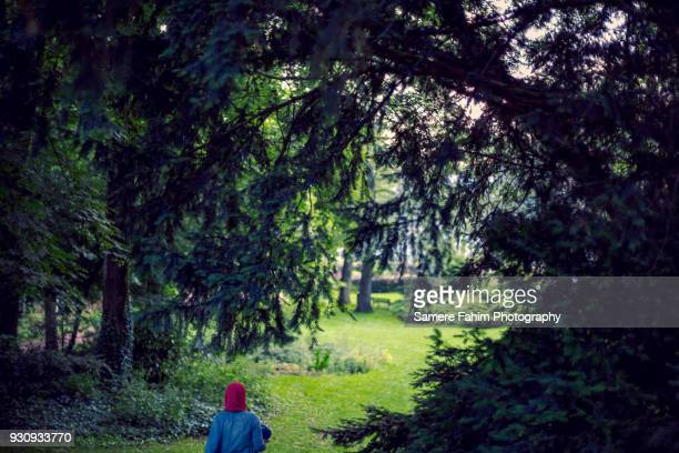 rear view of a veiled muslim woman walking in forest - samere fahim stock photos and pictures