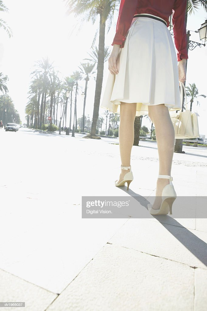 Rear View of a Well-Dressed Woman Walking Down an Avenue : Stock Photo
