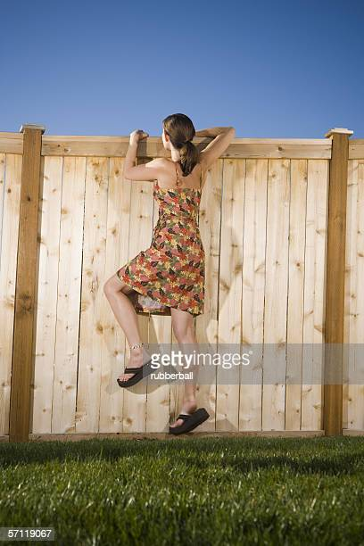 Rear view of a woman peeking over a wooden fence