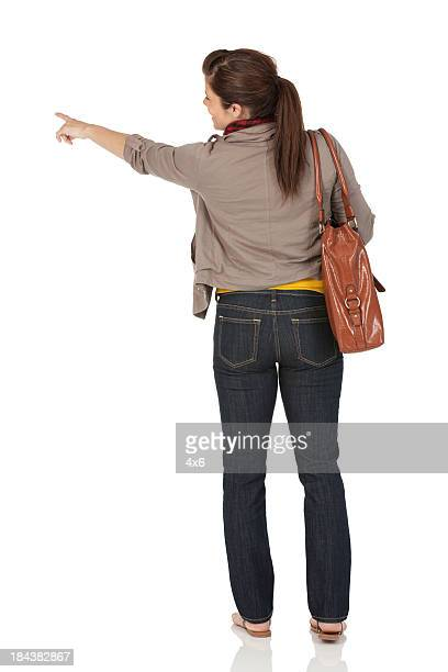 Rear view of a woman pointing