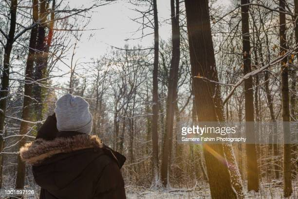 rear view of a woman standing in a forest enjoying a beautiful view - hainaut stock pictures, royalty-free photos & images