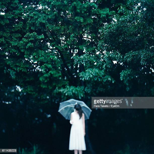Rear View Of A Woman With Umbrella Against Trees
