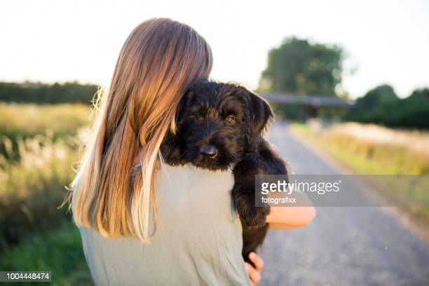 rear view of a young woman hug her schnauzer puppy - pet owner stock pictures, royalty-free photos & images
