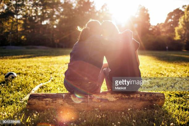 rear view of affectionate sisters sitting on log at park during sunny day - zus stockfoto's en -beelden