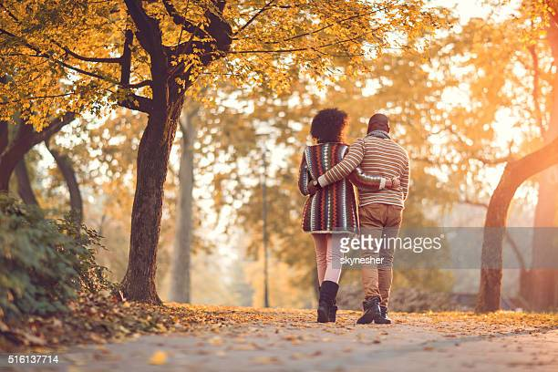 Rear view of African American couple walking in autumn park.