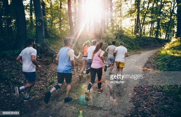 森の中のマラソン選手の背面。 - ハーフマラソン ストックフォトと画像
