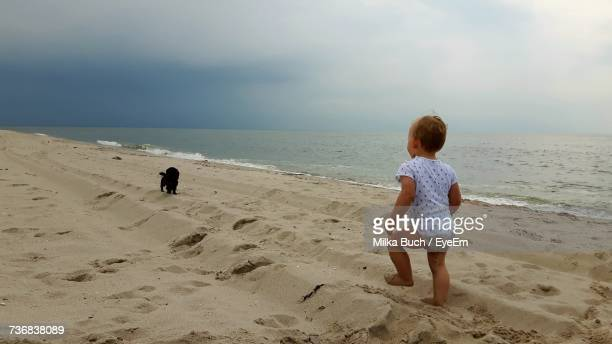 Rear View Of Baby Boy Walking With Dog On Sand At Beach Against Sky