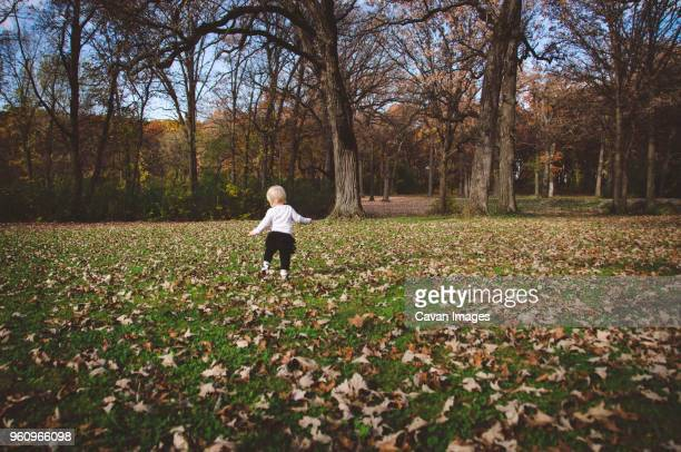 Rear view of baby girl standing on field against trees
