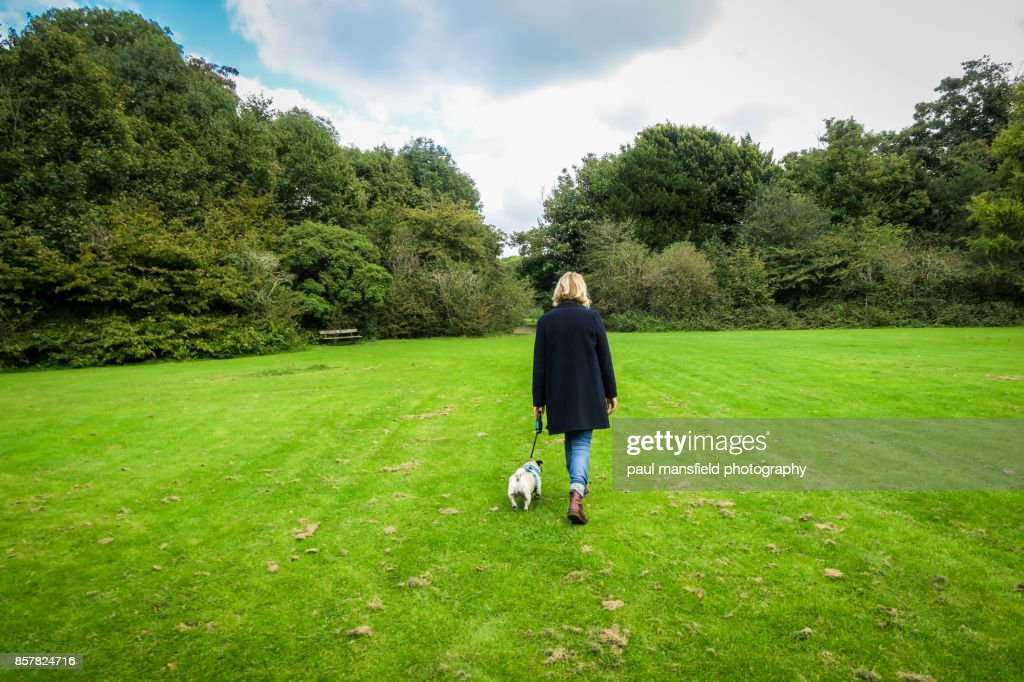 Rear view of blond lady taking her dog for a walk : Stockfoto