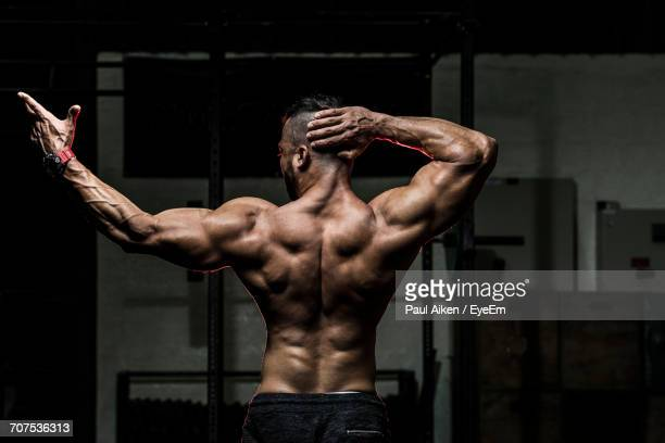 60 Top Body Building Pictures, Photos and Images - Getty Images