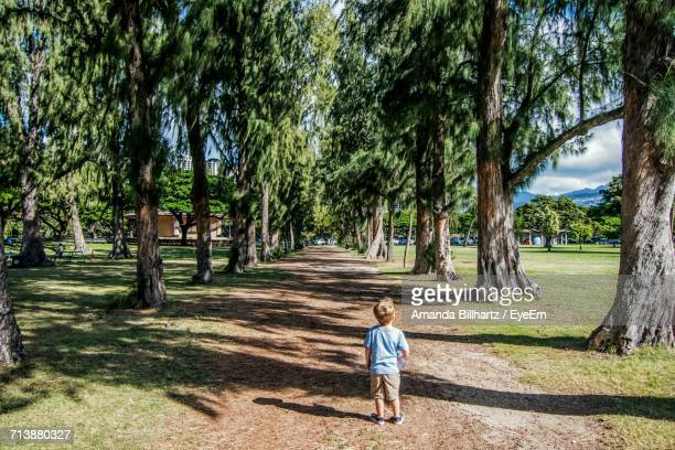 Rear View Of Boy Amidst Trees Against Sky