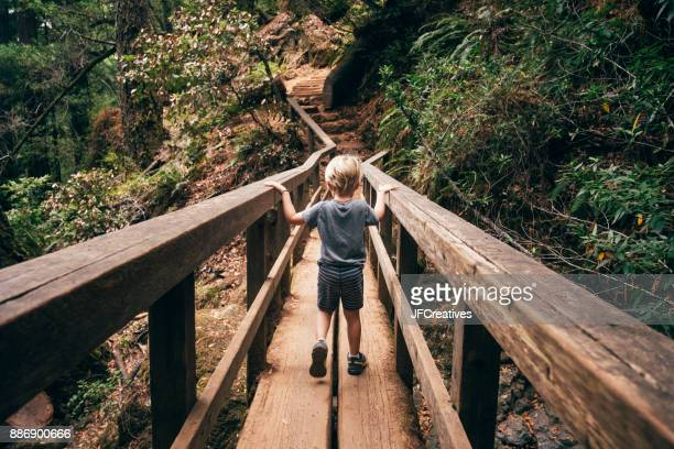 Rear view of boy crossing pedestrian bridge, Fairfax, California, USA, North America