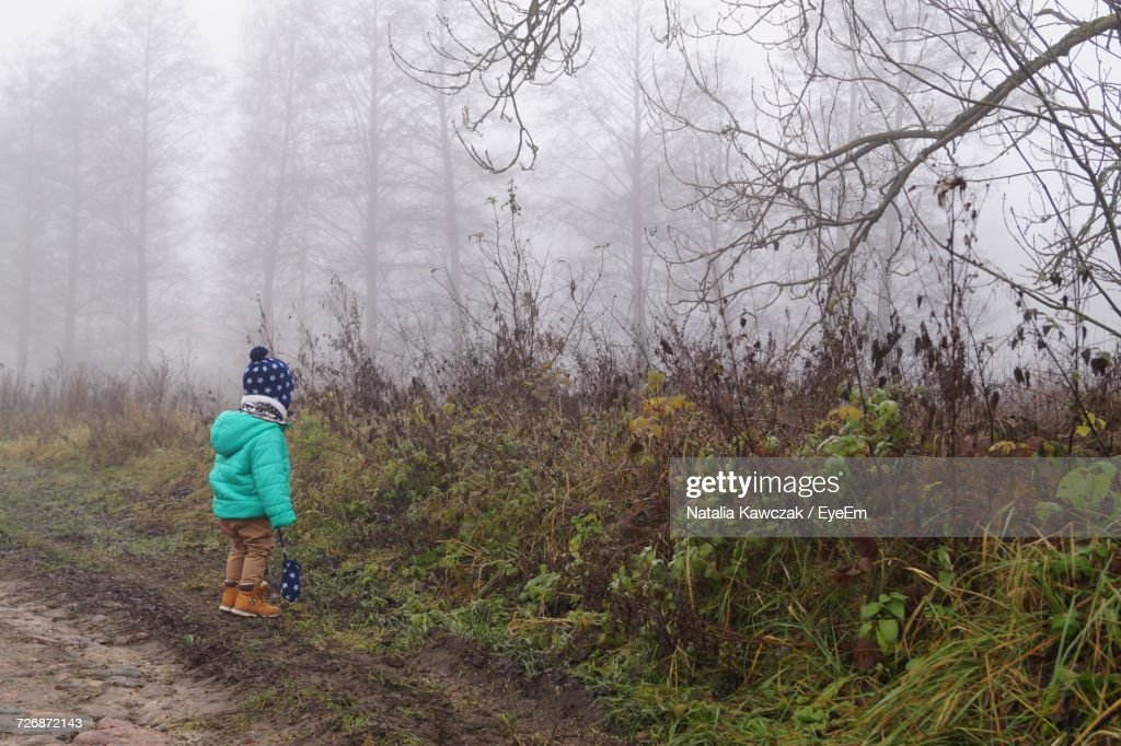 Rear View Of Boy In Forest Against Sky : Stock Photo