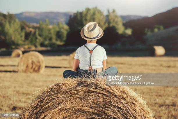 Rear View Of Boy Sitting On Hay Bales