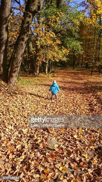 Rear View Of Boy Walking Field Amidst Trees In Forest During Autumn