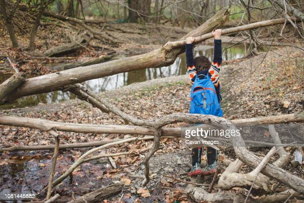 Rear view of boy with backpack hanging on fallen tree in forest