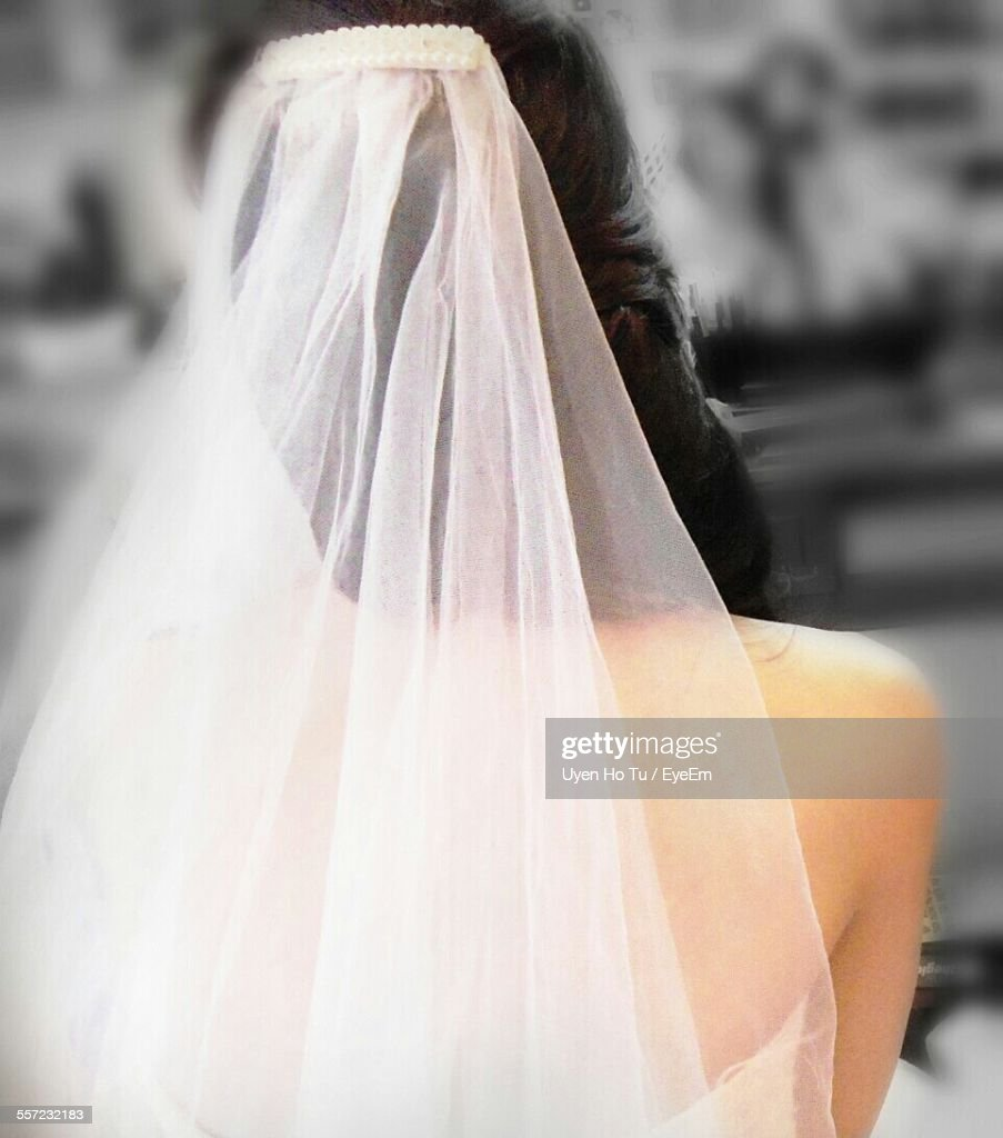 Rear View Of Bride Wearing Veil : Stock Photo