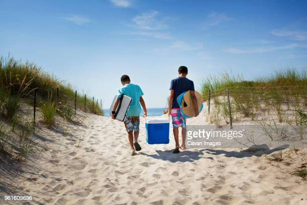 rear view of brothers carrying cooler while walking at beach - esky stock photos and pictures
