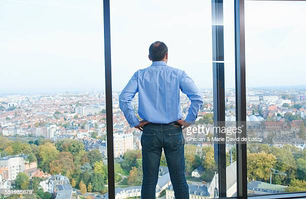 Rear view of businessman looking from office window at Brussels cityscape, Belgium