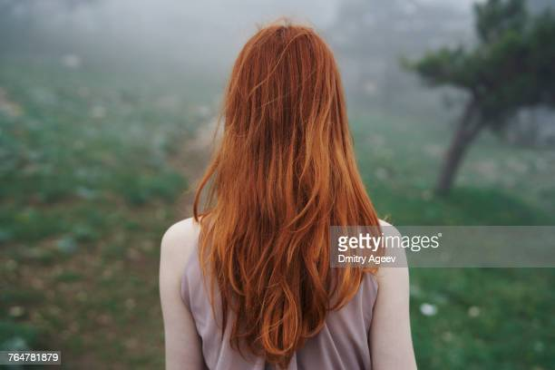 rear view of caucasian woman with red hair - ginger stock pictures, royalty-free photos & images