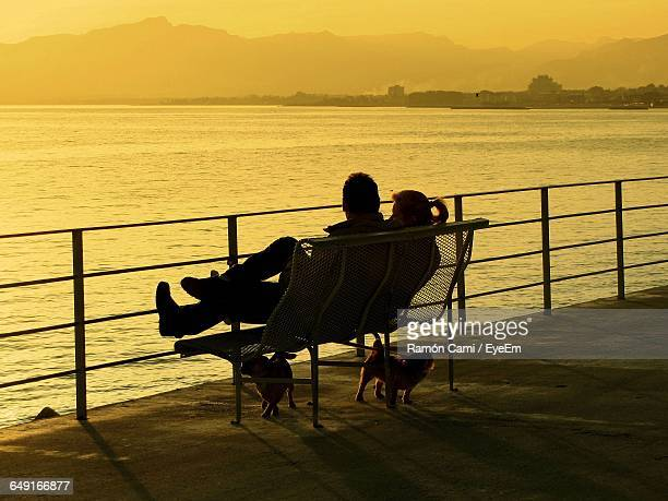 Rear View Of Couple Sitting On Bench With Dogs At Promenade During Sunset