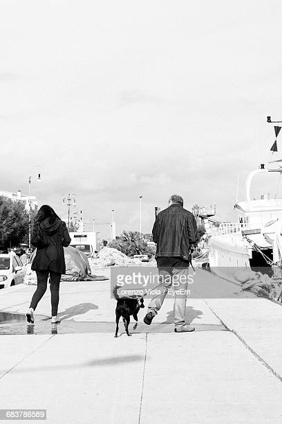 Rear View Of Couple With Dog At Harbor