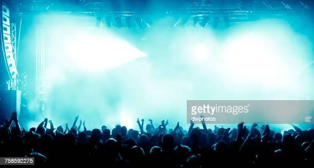 Rear View Of Crowd Enjoying During Concert