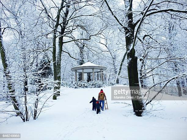 rear view of family amidst trees on snow covered field - pergola photos et images de collection