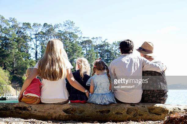 Rear view of family friends sitting on tree trunk at beach, New Zealand