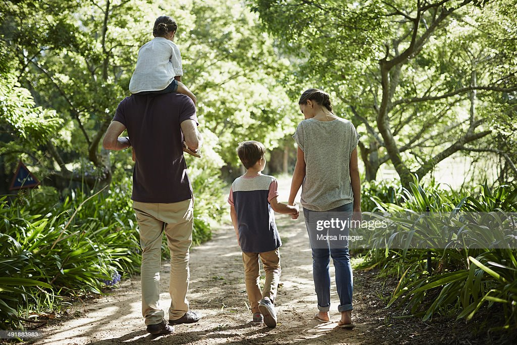 Rear view of family walking in park : Stock Photo