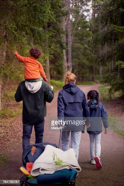 Rear view of family walking on trail amidst trees in forest