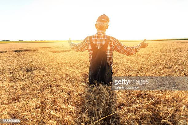 Rear view of farmer standing in the middle of field