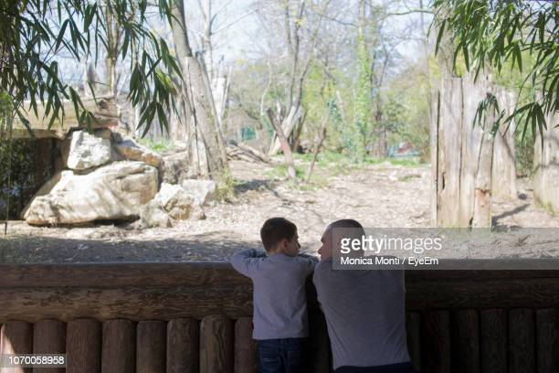 rear view of father and son talking by wooden fence - zoo stock pictures, royalty-free photos & images