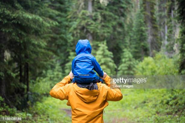 rear view of father carrying son on shoulders during a hike. - weekend activities stock pictures, royalty-free photos & images
