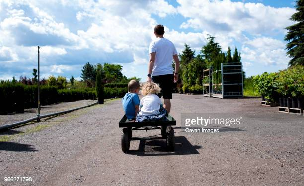 rear view of father giving toy wagon's ride to children during sunny day - toy wagon stock photos and pictures