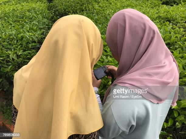 rear view of female friends using phone by plants - velo foto e immagini stock