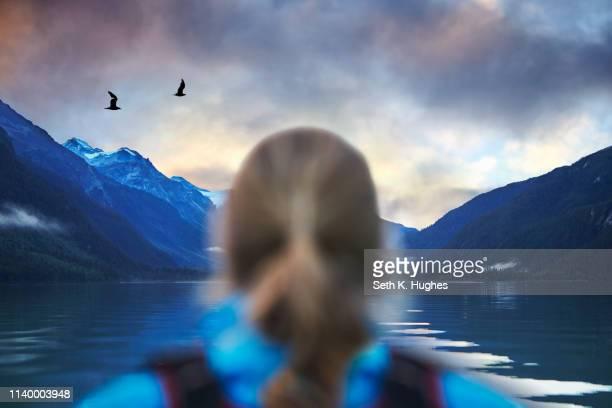 rear view of female hiker gazing at seagulls and mountain lake, haines, alaska, usa - paisajes de alaska fotografías e imágenes de stock